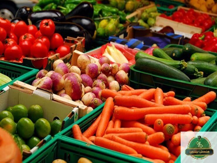 تصدير الخضار والحاصلات الزراعية